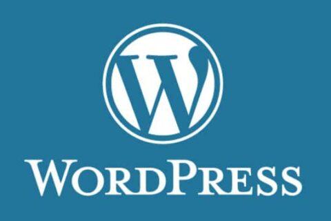 logo wordpress Cms