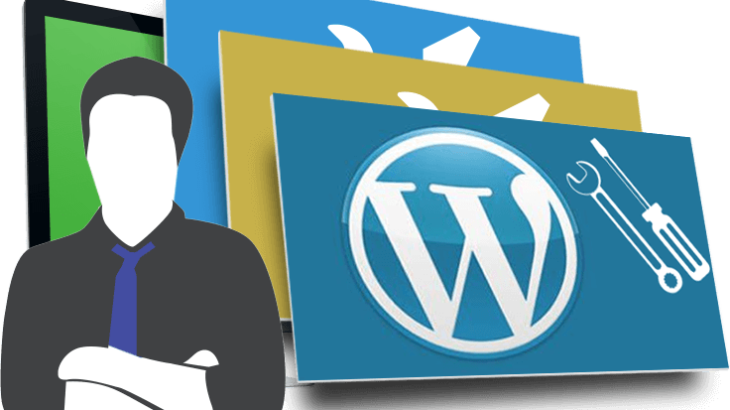 consulente wordpress