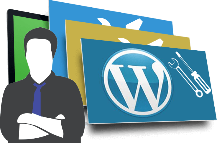 consulente wordpress